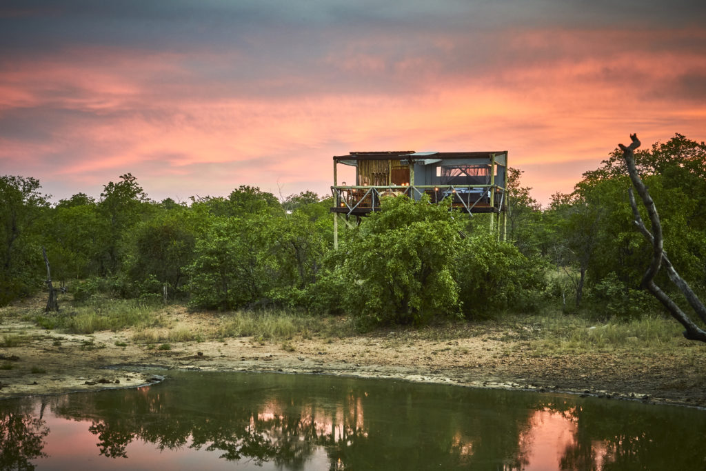Motswari Private Game Reserve_Giraffes Nest (3)
